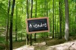 foret-a-vendre-ad0c22